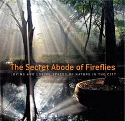 the-secret-abode-of-fireflies